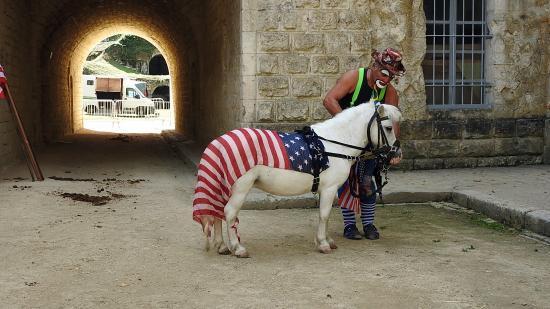 Journée du cheval 09092018 Fort de Condé (3)