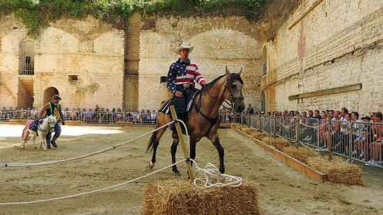 Journée du cheval 09092018 Fort de Condé (4)