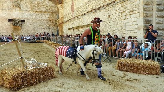 Journée du cheval 09092018 Fort de Condé (5)